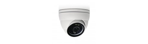 AVTech AVM2220 Dome IP Camera 2 Megapixel Infrarood